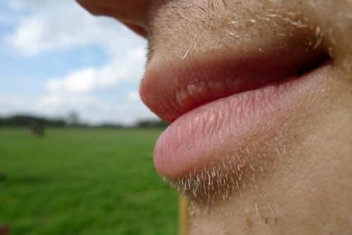 Ruijgrok lippen